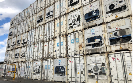 Reefer containers are expected to play a role in vaccine logistics, Cool Logistics online seminar hears