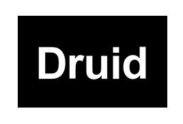 Druid Bronze Sponsor Cool Logistics Global 2021